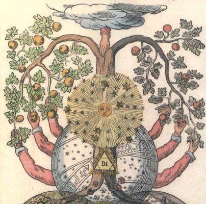 tree-a